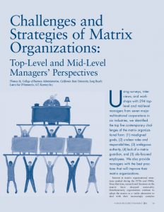 Icon of Challenges and Strategies of Matrix Organizations